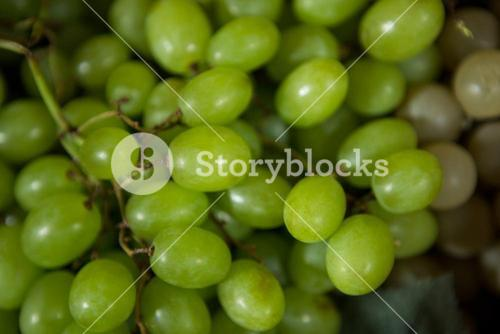 Grapes at organic section in market