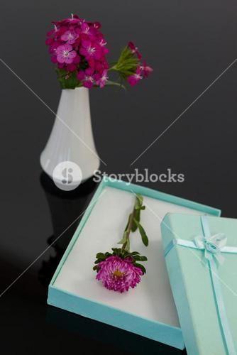 Opened gift box with flower and vase