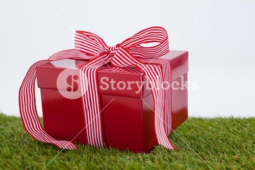 Red gift box on green grass