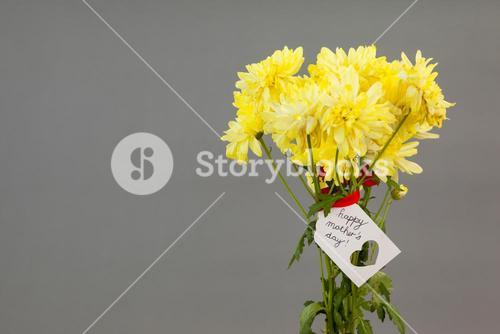 Close-up of happy mothers day card on flowers