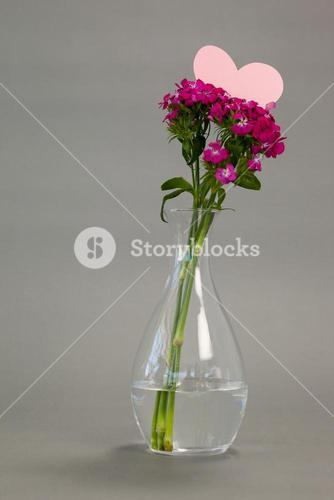 Flower vase with blank heart shape card