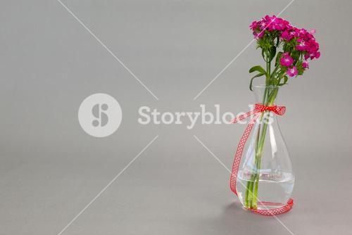 Flower vase tied with red ribbon