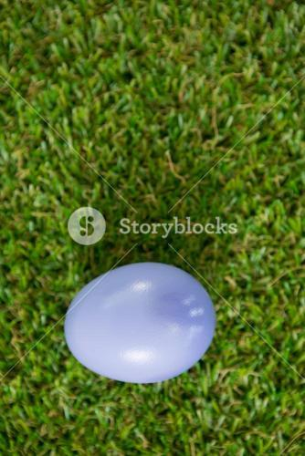 Violet Easter egg on grass