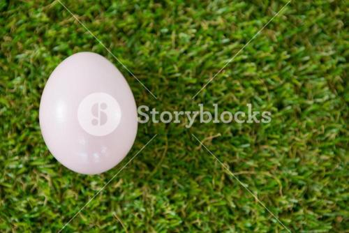 White Easter egg on grass
