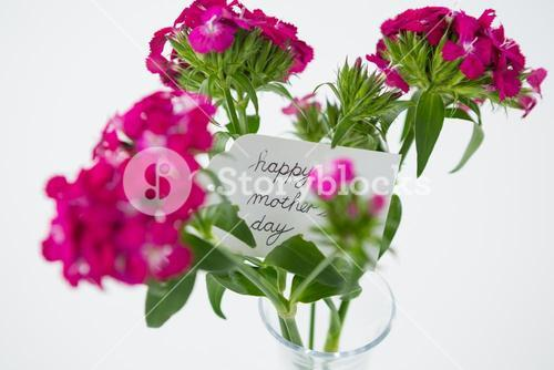 Bunch of pink roses with happy mothers day tag in flower vase