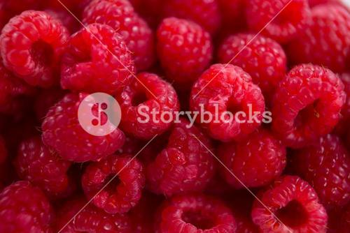 Full frame of raspberry