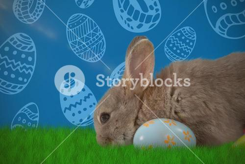 Composite image of bunny with floral pattern easter egg