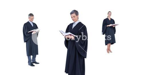 Judges group reading
