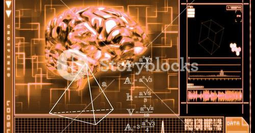 3d image of brain and equations