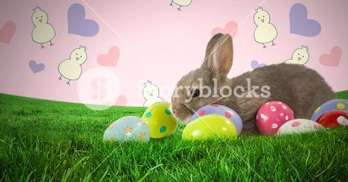 Easter rabbit with eggs in front of pattern