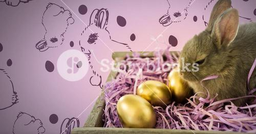 Easter Rabbit with eggs and pattern