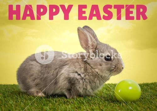 Pink type over rabbit on grass with green egg against yellow sky