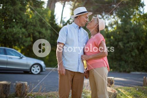 Senior couple romancing at roadside