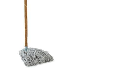 Close-up of mop