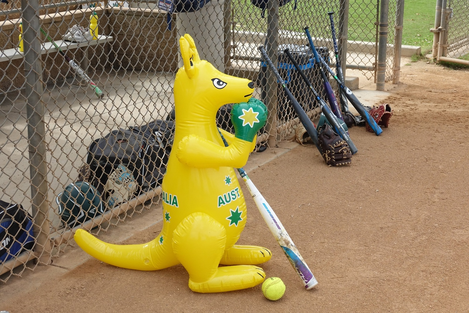 Australia's mascotte before the third place game