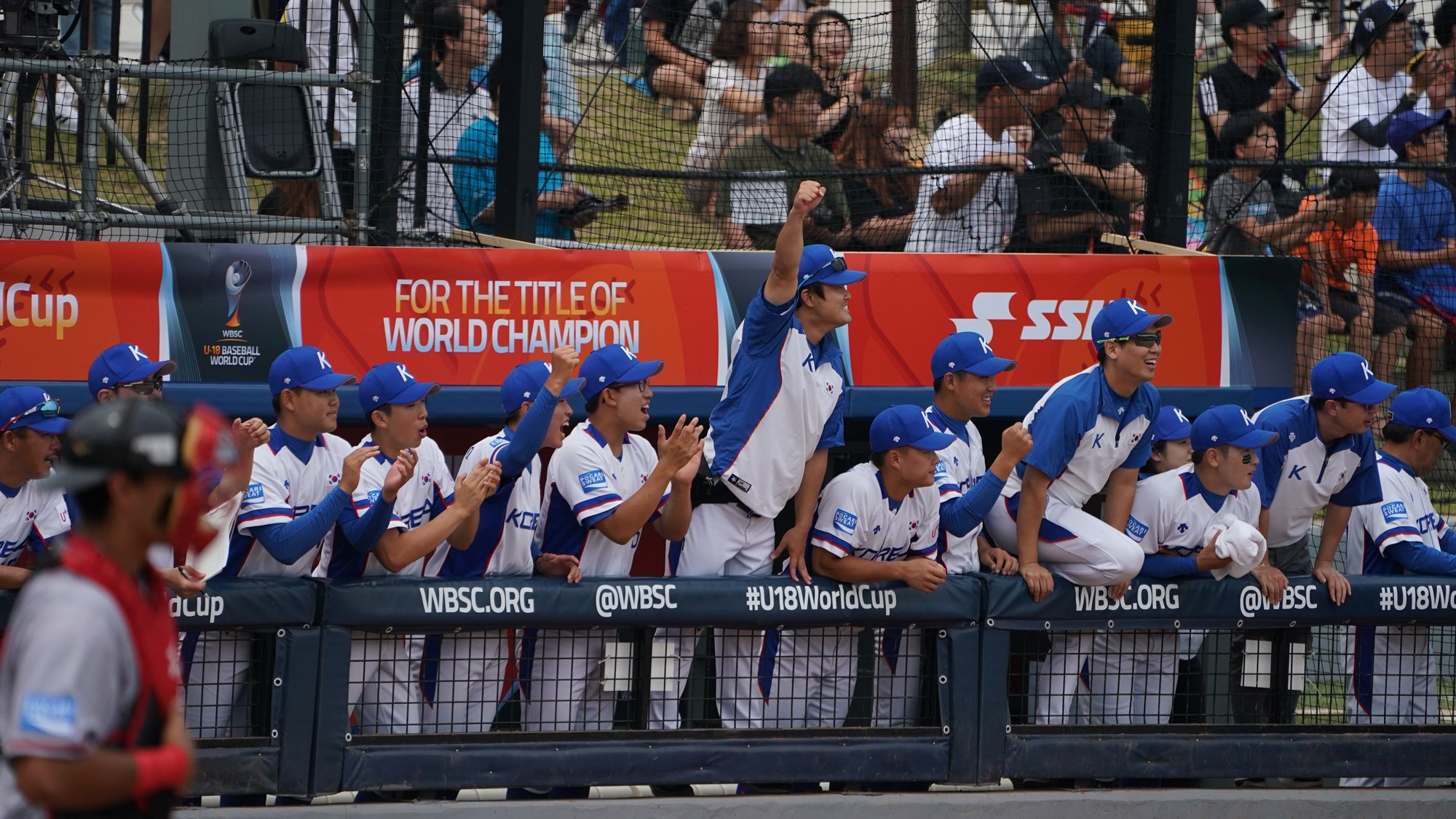 Korea's dug out celebrates