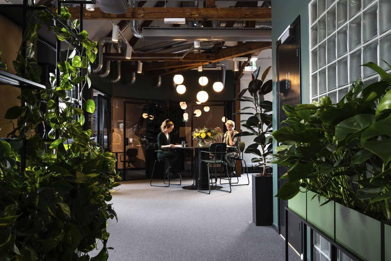 kontor, spisebord, sittegruppe, kontorlandskap, interiørarkitektur, interiør, design