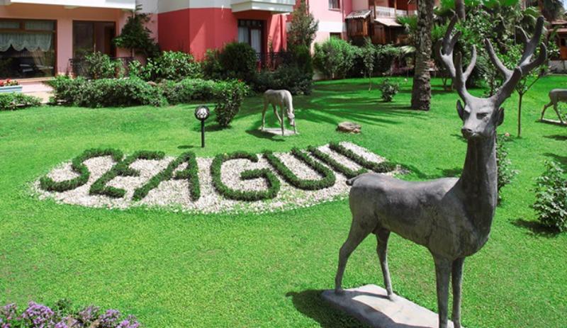 SEAGULL HOTEL27803