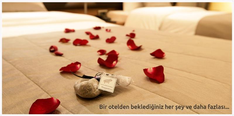 RYS Hotel40668