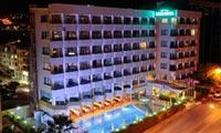 Palm Hotel44040