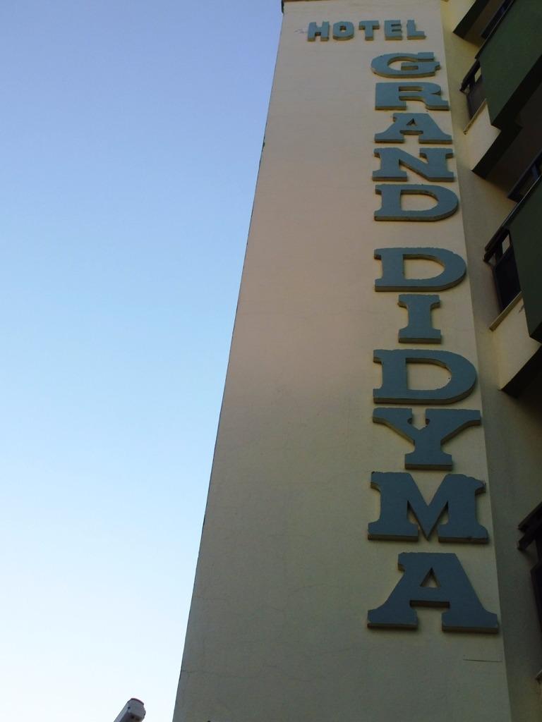 Grand Didyma Hotel59334