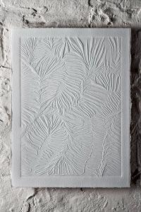 Brain-Coral-detail-blind-embossing-©-Jacqui-Dodds