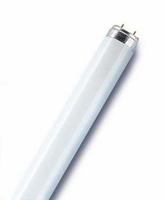 Fluorescent tube  2ft 18w 840 Tube