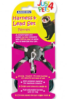Ancol Ferret Harness & Lead Set x 1