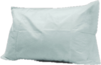 Disposable Pillow Cases