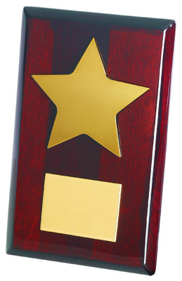 20cm Gold Metal Star on Wood Plaque