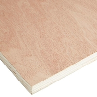 "8"" X 4"" Sheet Plywood"
