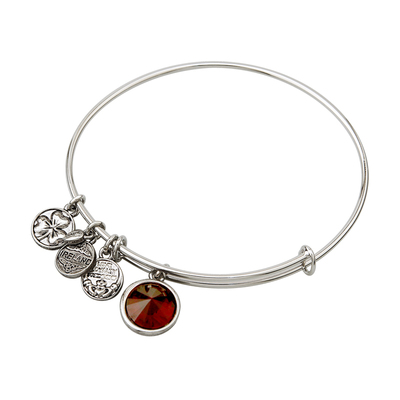 RHODIUM BIRTHSTONE CHARM BANGLE - JANUARY