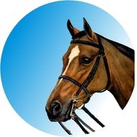 Horse - Head (25mm Centre)