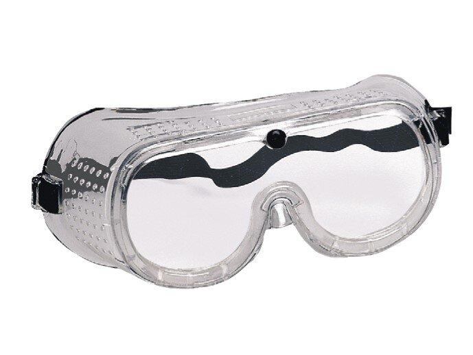 REDBACK Wrap Around Safety GP Goggle