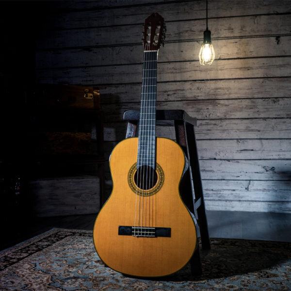 Washburn C40-A - 6 String Nylon 4/4 Classical Acoustic Guitar