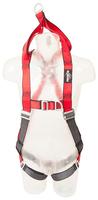 Protecta Pro Rescue Harness