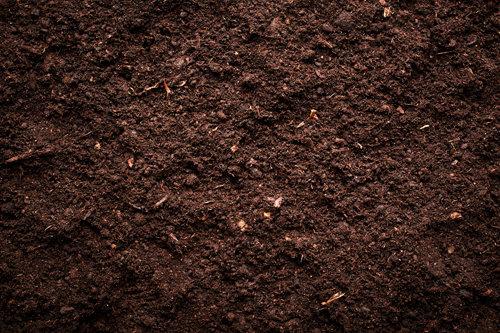 Soils, Loams & top Dressings