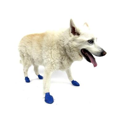 Pawz Dog Medium (12)