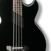 Acoustic and Semi-Acoustic Basses