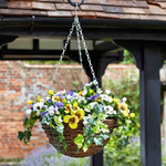 Faux Décor Pansy Hanging Easy Basket - 30cm with background