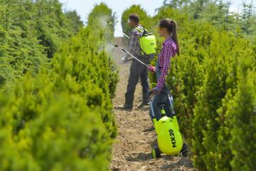 Tips to buying Pressure Sprayers | Garden Sprayers