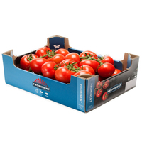 Tomatoes (Vine)5kg)