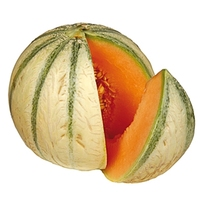 Melon: Charentais Single