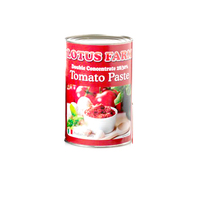 Tin Tomato Paste 28/30-Blue Rose-(800g)