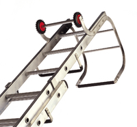 Lyte Trade Roof Ladder Dbl Sect 15+13 Rung