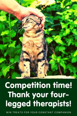 Competition time! Giving thanks to our four-legged therapists