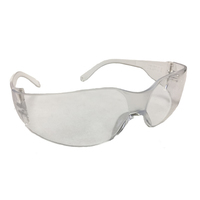 Bodytech Safety Glasses, Clear Lens and Arms