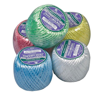 Shop Twine Polyprop Assorted