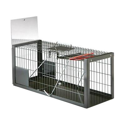 """Cat Trap Eeziset 76 x 28 x 30cm (30 x 11 x 12"""")"""