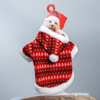 Dog's Red Christmas Jumper